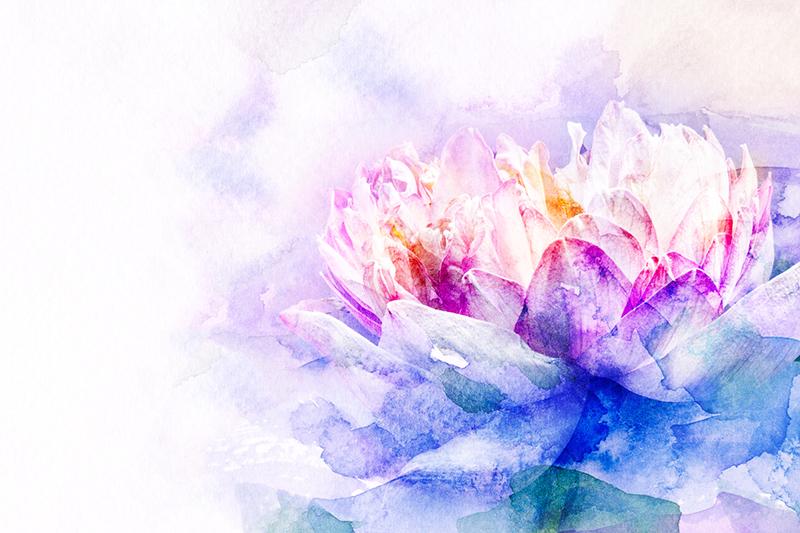 Spiritual Lotus Flower